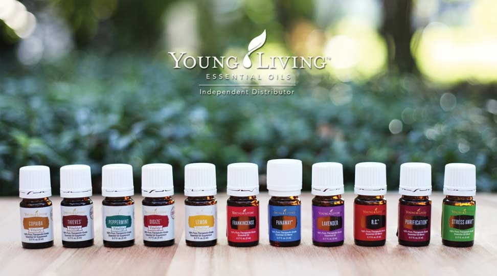Young Living Is a Scam